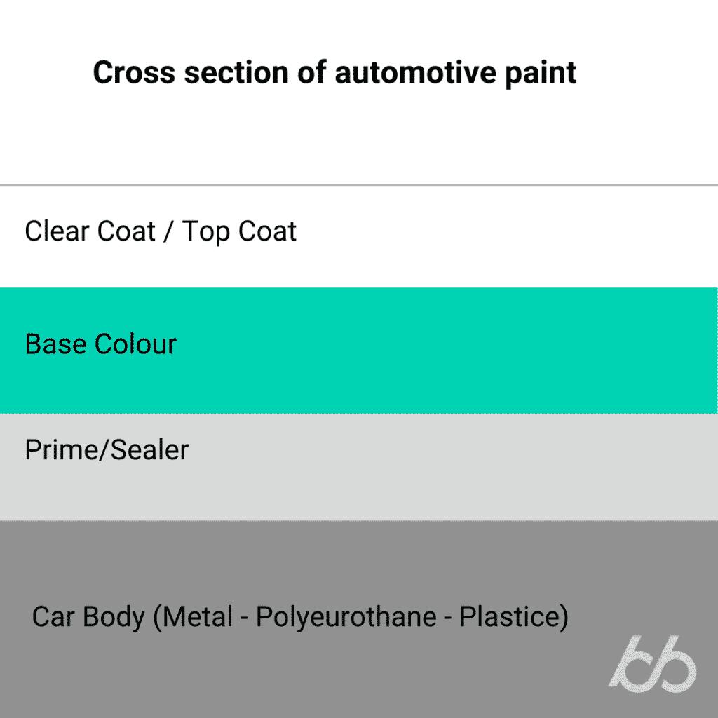 Cross section of automotive paint